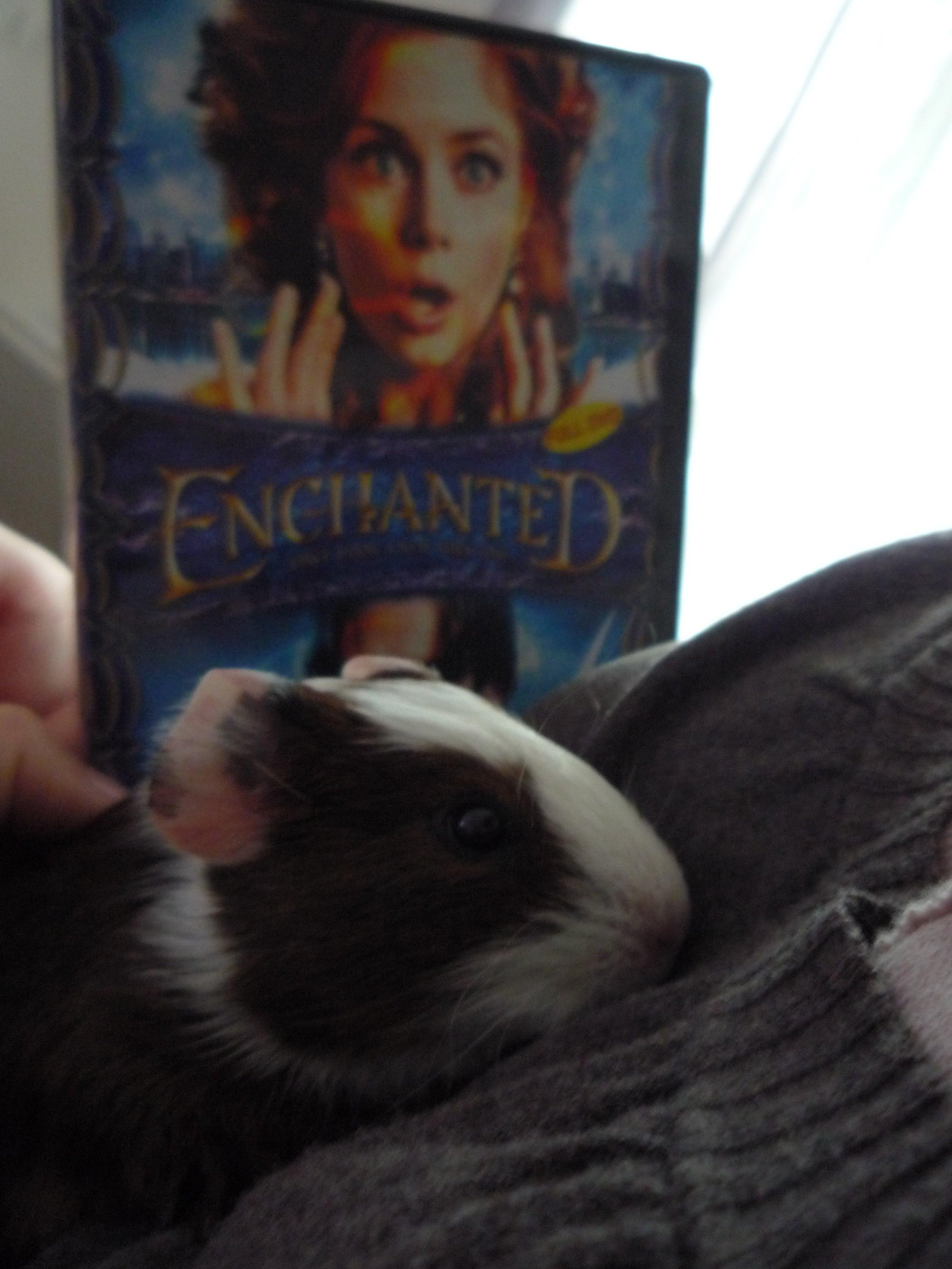 Gisèle Enchanted