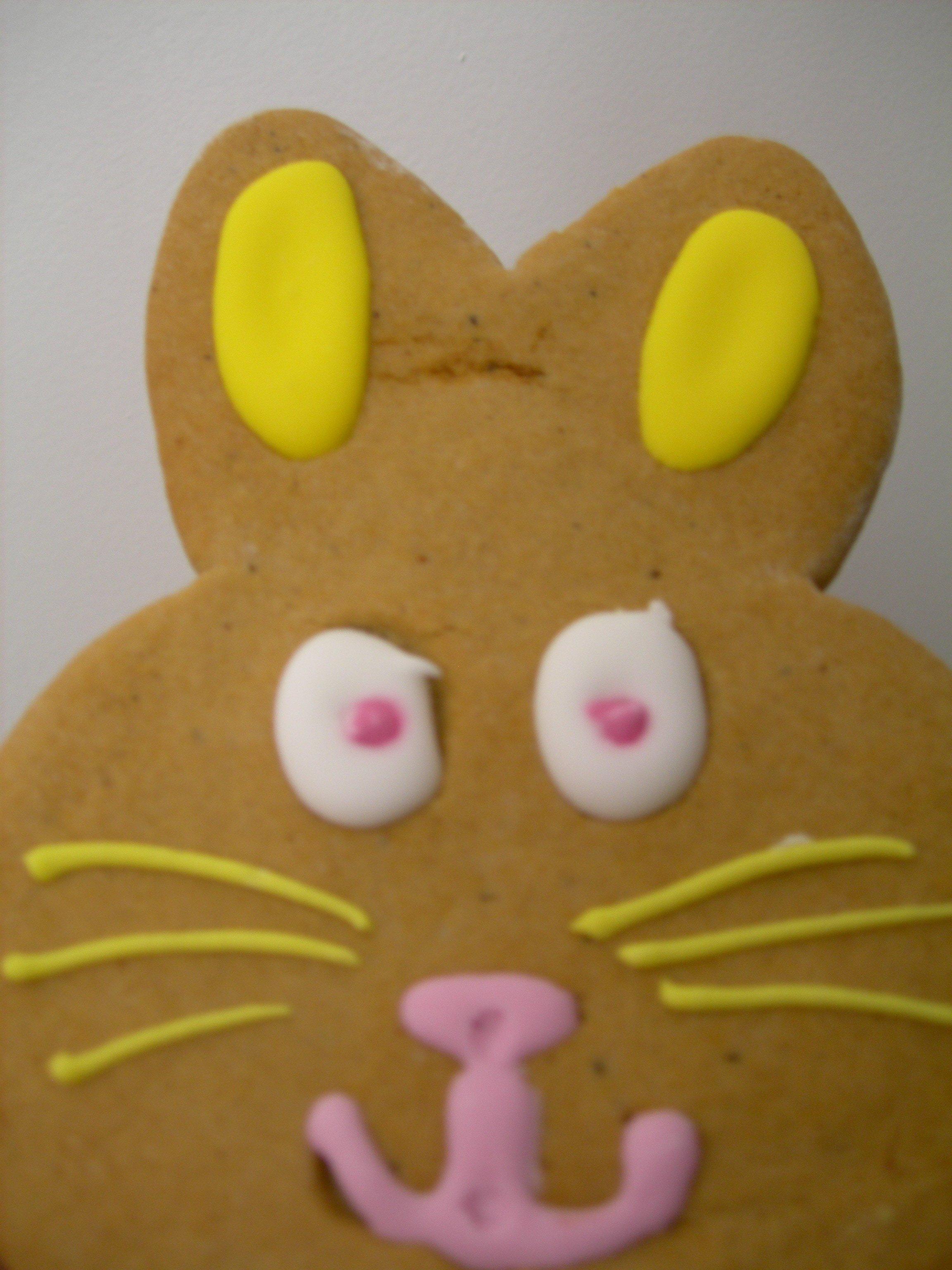 le lapin Gingerbread, ami de Gisou